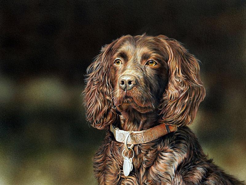 River Clay artist Danny O'Driscoll